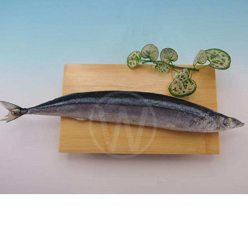 SANMA-FISH-2